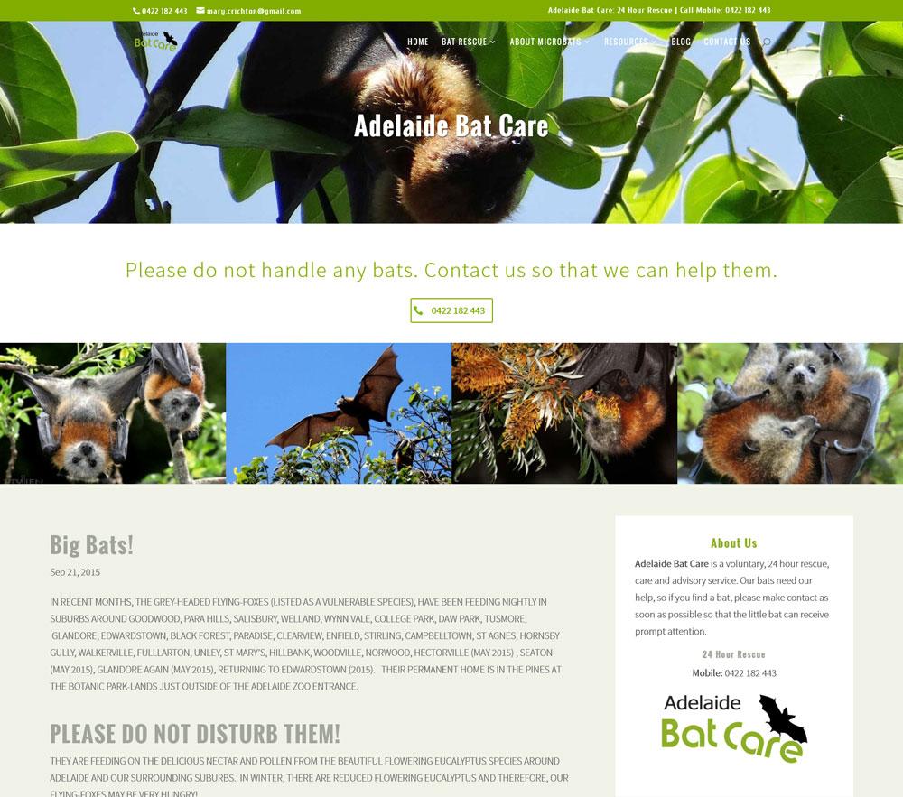 Ny responsive hemsida till Adelaide Bat Care