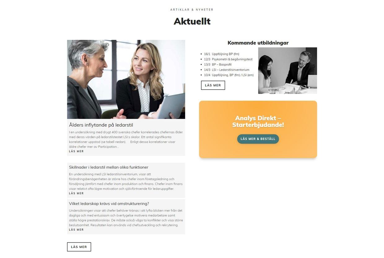 redesign av hemsida 2